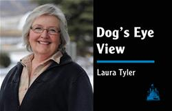 Dog's Eye Laura Tyler